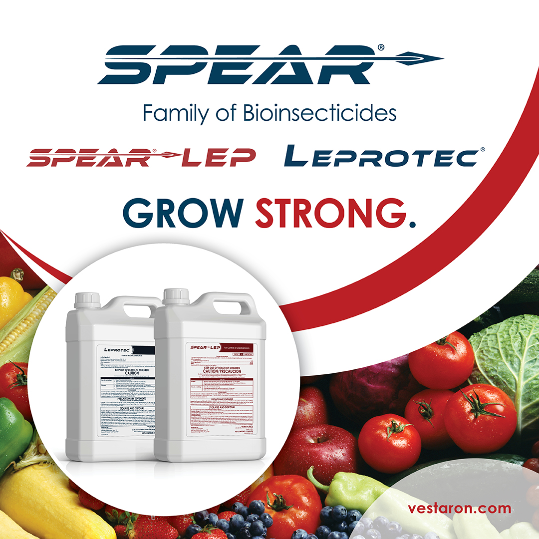 Spear®-Lep + Leprotec® Co-pack